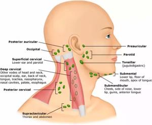 علت فک درد صورت