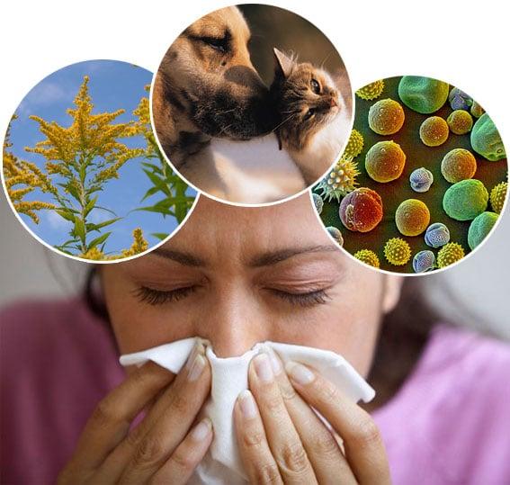 درمان آلرژی